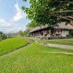 villa velusa pondok sapi with rice field view01