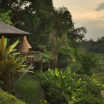 Top 4 Exceptional Villas in Ubud