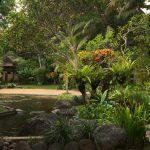 Ubud Villas For Rent