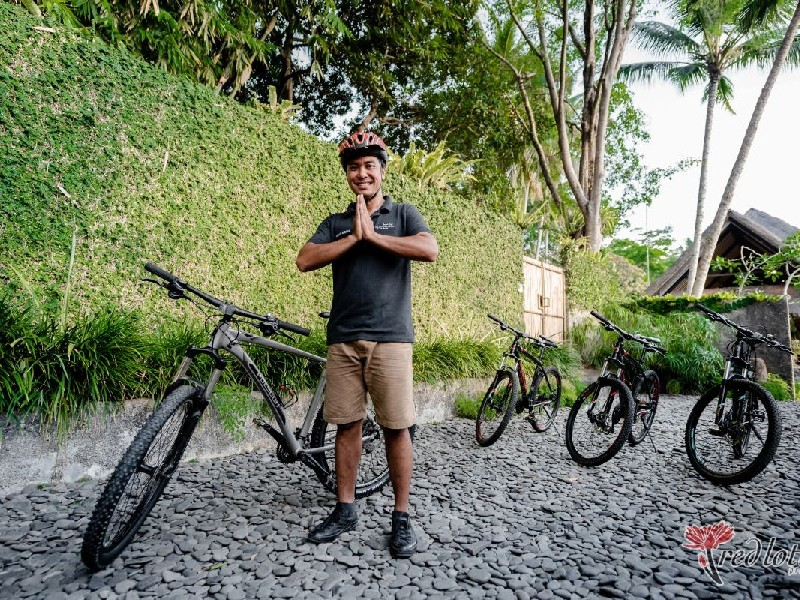 Bicycle Tour in Ubud
