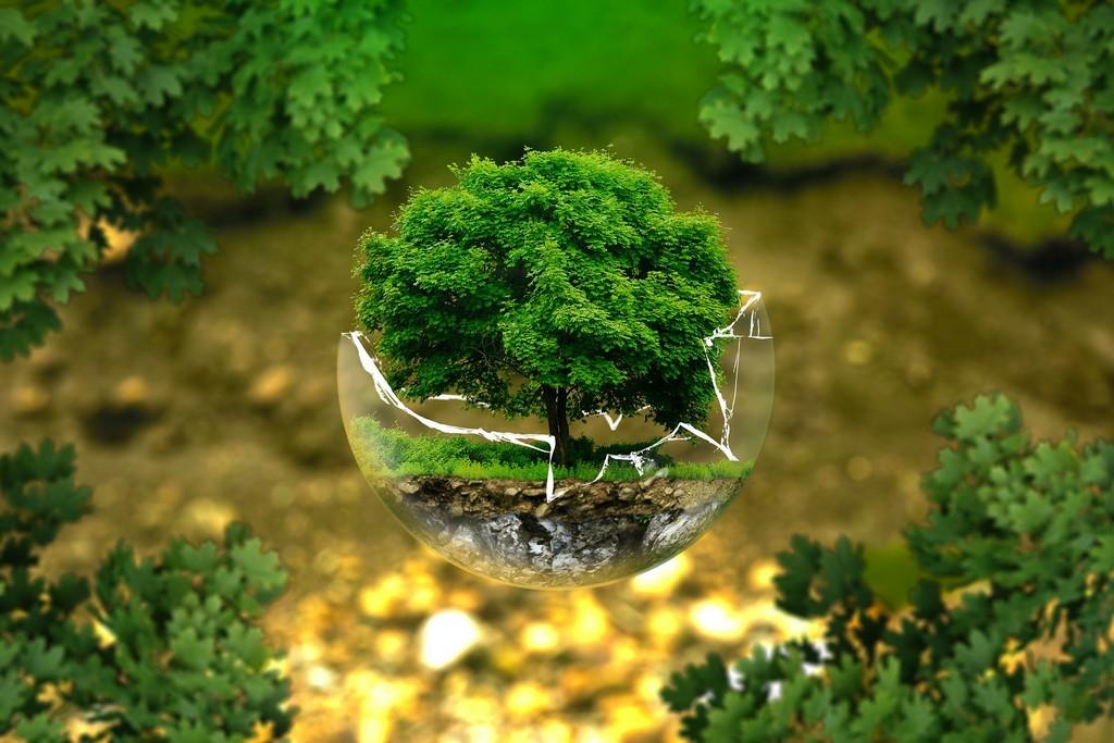 reducing emission of carbon dioxide