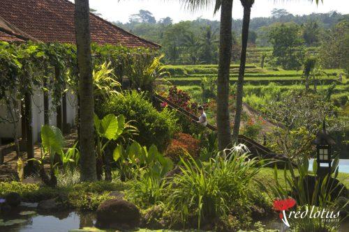 Retreat villa ubud